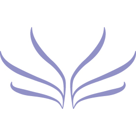 The Boxser Diversity Initiatve Logo